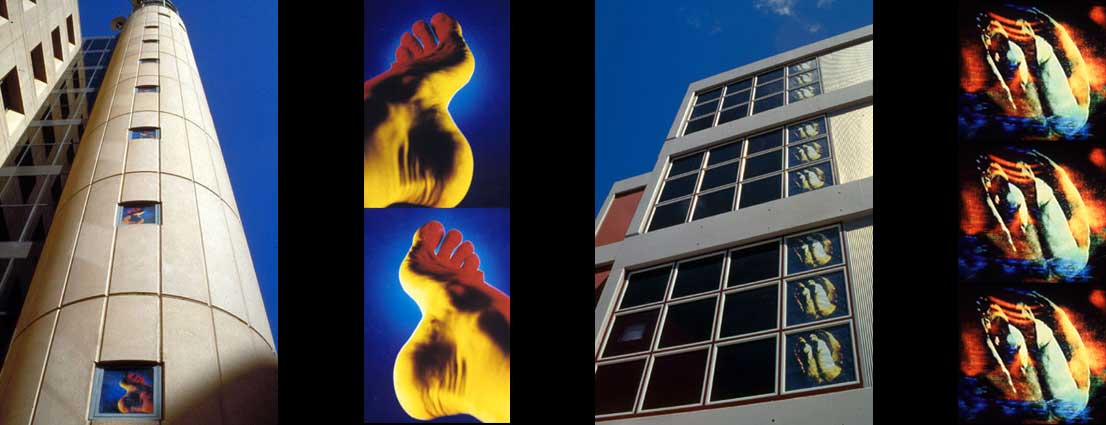 Images of works installed in the windows of buildings in Sydney